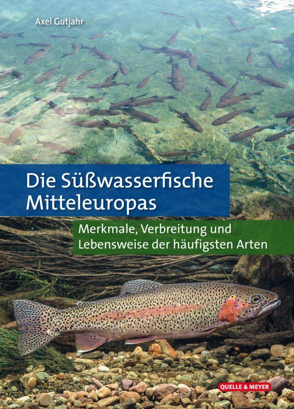 Suesswasserfische Mitteleuropas